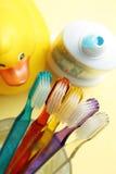 Brosses à dents de familles, pâte dentifrice, canard en caoutchouc jaune, salle de bains Photographie stock