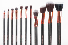 Brosses professionnelles de maquillage Image stock