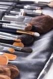 Brosses professionnelles de maquillage dans le cas compact Photographie stock libre de droits