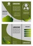 Broszurki skoroszytowej ulotki eco zieleni liścia natury abstrakta życiorys element ilustracja wektor