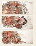 Broszurki wektorowy ustawiający z kwiecistymi elementami dla projekta Zdjęcie Stock