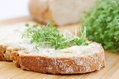 Brot mit Butter und Kresse Lizenzfreies Stockbild