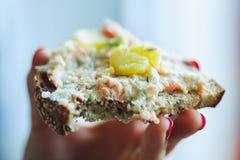 Brot mit Lachsragouts Stockbild