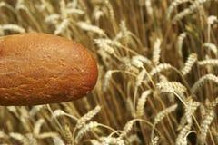 Brot vor Getreidefeld Stockbilder