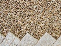 Brotchipsletten und Körner des Weizens Stockbilder