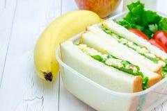 Brotdose mit Sandwichen, Apfel, Banane und Milch Lizenzfreie Stockfotos