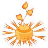 Brote solar Libre Illustration