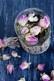 Brotes color de rosa del color de rosa Fotos de archivo libres de regalías
