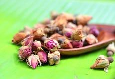 Brotes color de rosa del té de la flor Imagen de archivo libre de regalías