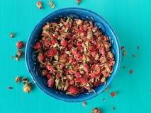 Brotes color de rosa secados Foto de archivo
