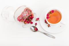 Brotes color de rosa secados Imagen de archivo