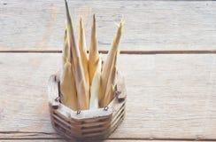 Brotes de bambú Imagenes de archivo
