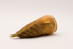 Brotes de bambú Imagen de archivo
