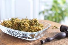 Brotes de la marijuana en la placa de cristal Imágenes de archivo libres de regalías
