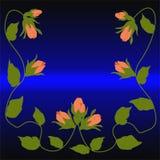 Brotes de las rosas del escarlata en un fondo púrpura imagen de archivo