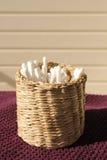 Brotes del algodón Imagen de archivo libre de regalías