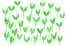 Brotes verdes de la acuarela stock de ilustración