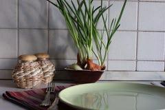 Brotes verdes de la cebolla que crecen en cocina con los envases de comida y los cubiertos en las toallas de té Fotografía de archivo libre de regalías