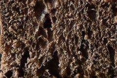 Brotfleisch in einem Schnitt Stockbild