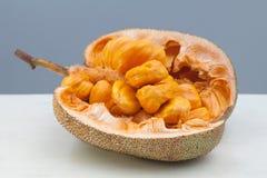 Brotfruchtbaum-ganze Zahl stockfoto
