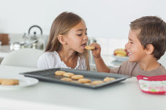 Brother giving a cookie to his sister Stock Images