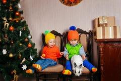 Brother, hermana y un conejo cerca del árbol de navidad Imagenes de archivo