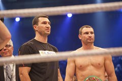 Brother Klitschko in ring Stock Photos