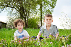 Brother and little sister sitting in flowers. Royalty Free Stock Photography