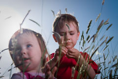 Brother and Sister. Closeup of a young brother and sister outdoors in a field.  Taken from a low perspective Stock Photography