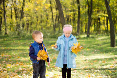 Brother and sister with autumn leaves Royalty Free Stock Image