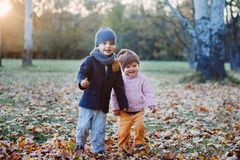 Brother and sister in the autumn park Stock Image