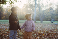 Brother and sister in the autumn park Royalty Free Stock Photography