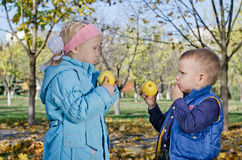 Brother and sister eating apples Stock Photos