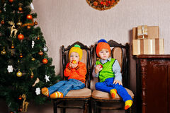 Brother and sister eating apples near a Christmas tree. Royalty Free Stock Image