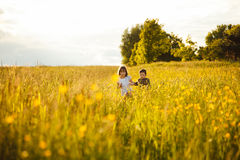 Brother and sister in a field royalty free stock images
