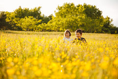 Brother and sister in a field stock photography