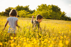 Brother and sister in a field royalty free stock photo