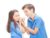 Brother and Sister fighting Royalty Free Stock Photo