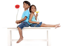 Brother and sister holding flowers Royalty Free Stock Images