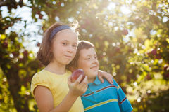 Brother and sister in an orchard Royalty Free Stock Image
