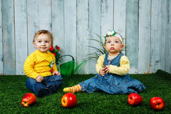 Brother and sister playing on lawn Stock Photography