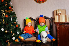 Brother, sister and a rabbit near Christmas tree. Stock Images