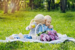 Brother and sister sitting on summer meadow stock photography