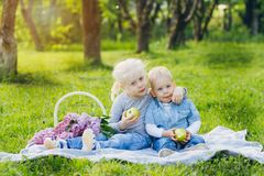 Brother and sister sitting on summer meadow royalty free stock photography