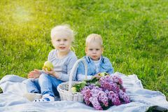 Brother and sister sitting on summer meadow royalty free stock images