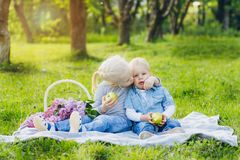 Brother and sister sitting on summer meadow stock photo