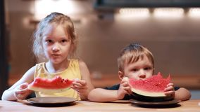 Brother and sister sitting at the table on kitchen. Boy and girl eating fresh watermelon, looking to the camera. Brother and sister sitting at the table on stock video
