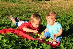 Brother and sister sorting apples in autumn. Garden Stock Photo