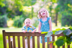 Brother and sister standing on a park bench. Adorable kids, little curly girl and a cute baby boy, brother and sister, sitting together on a wooden bench in a Stock Photos
