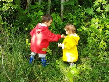 Cute toddlers picking forest berries stock photography